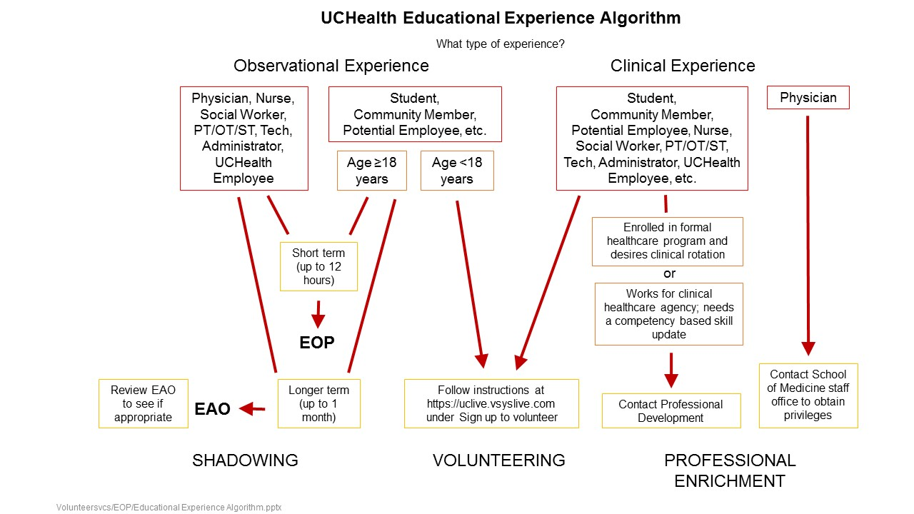 Educational Experience Algorithm wide